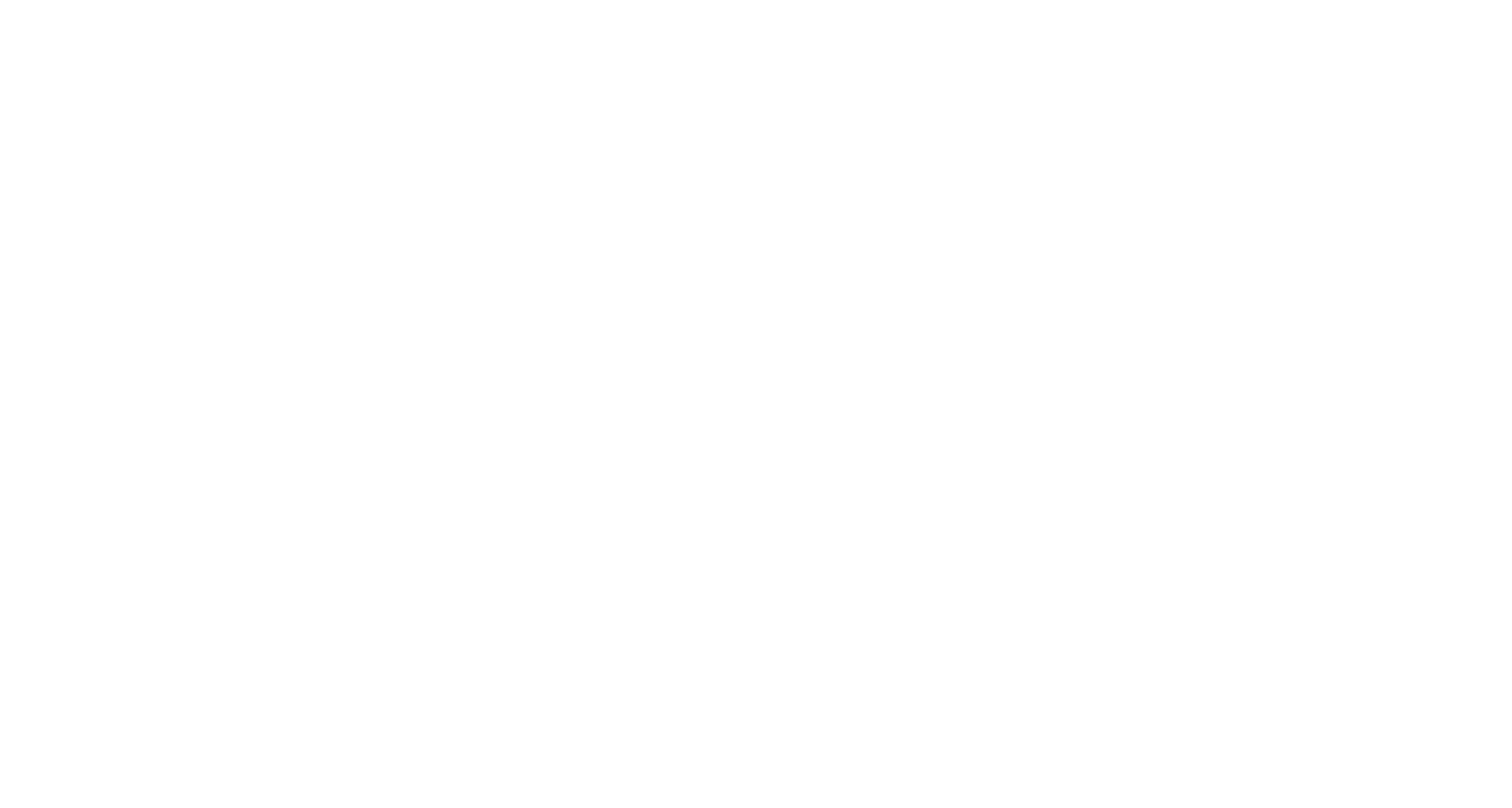 dvelop-logo-invers-3